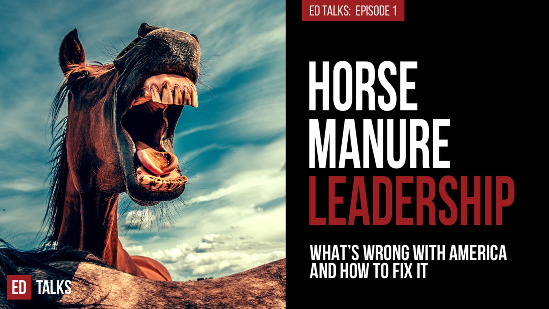 EdTalks Episode1 HorseManureLeadership - Ed Rush | Business Growth Acceleration Mentor, Speaker, Author - 5x #1 Bestselling Author, Speaker, Mentor, Advisor